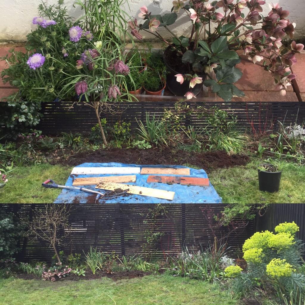 Mumspo gardening border